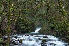 Bridal Veil Falls (Iftekhar Naim) Tags: oregon columbiarivergorge waterfalls portland bridalveilfalls bridal breathtakinglandscapes