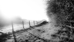 Misty Morning Track (The Rustic Frog) Tags: camera uk morning light shadow england sky sun white black nature monochrome field grass sunshine misty canon fence countryside dewdrops wire frost track post path row powershot cast dew hedge fencing posts warwickshire hedgerow g15