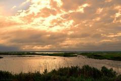 a darkness (tom bourdot) Tags: light summer nature water june clouds outside evening dusk nj gimp wetlands marsh nikkor forsythe refuge forsytherefuge nikond3300