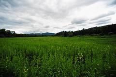 Adirondacks (hm_photography) Tags: adirondacks adirondackmountains statepark upstatenewyork ny scenery naturephotography nature naturallight mountains travelphotography usa scenic adirondack state park travel landscape