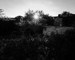 Chateauneuf Sun rays (Wilco1954) Tags: village burgundy cottages chateauneuf cotedor