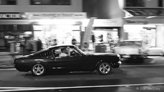 Fastback (Joe Nelley) Tags: newzealand mustang whangamata fastback beachhop canonefs1855mmf3556is