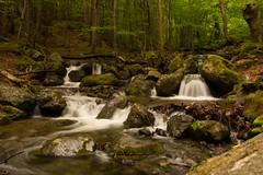 Mountain Creek (gennadiy.troitskiy) Tags:    bg