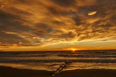 New Brighton sunrise (sandybrinsdon) Tags: sunrise new brighton flickr christchurch newbrighton