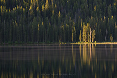 Morning Calm (Bob Bowman Photography) Tags: lake water trees light landscape forest stanleylake idaho sawtoothwilderness reflection calm serenity tranquil fog morning sunrise