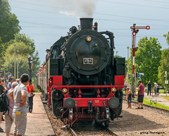 a Frankfurt-Knigsteiner steam train (greg luengen) Tags: dampflok lok steam train locomotive classic oldtimer romantik history historic sony sonyalpha transportation urlaub holidays