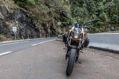 KTM Duke 390 2014, with ViaTerra Velox Saddlebags (front view, 2 bags mounted) (demawo) Tags: coffsharbour ktm ktmduke390 motorbike motorcycle viaterraveloxsaddlebags