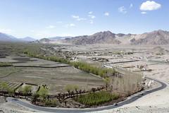 thiksay village, ladakh (thupstan_rin) Tags: landscape spring ngc himalaya ladakh littletibet indusvalley himalayankingdom thelastshangrila thelastparadise incredilbeindia thiksayvillage silkroutephotography