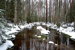 A brook in snowy forest SE of Pond Vakkalampi (Nuuksio national park, Vihti, 20120106) (RainoL) Tags: winter snow forest finland geotagged january v brook fin nuuksio 2012 uusimaa vihti vichtis nuuksionationalpark 201201 20120106 brooksofnuuksio geo:lat=6031495500 geo:lon=2447341500 vakkalampi