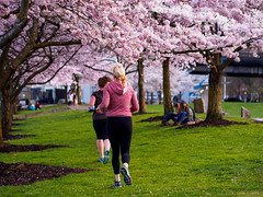 Matching colors (bluesywaters) Tags: street pink trees color green portland cherry waterfront candid cherryblossom runners