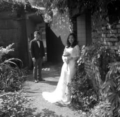 img368 (阿智) Tags: bw 120 film darkroom 黑白 fujiacros100 底片 暗房 沖片 rolleiflex35a