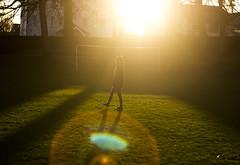 Park sunny day (WhoIsMostash) Tags: park sun field spring glare