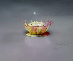Chrysanthemum (NAWAF AL HAMIDI) Tags: macro canon wow photo nice colours pic splash mypic صورة الوان عدستي صوري تصويري السعودية قطرات كانون مصورين الطائف سبلاش تراقص غردبصورة الناسالرايئه ahdphoto anstaqram