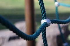 Climbing Net (rolandmks7) Tags: net takumar teal 55mm climbingnet sonynex5n
