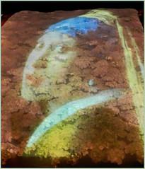 """MACY'S 2015 MINNEAPOLIS """"Art in Bloom"""" RENAISSANCE GARDEN ART (strandviewphotos) Tags: art minnesota garden minneapolis macys renaissance"""