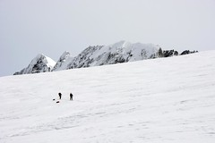 Across the Kohl-Larsen Plateau (sylweczka) Tags: snow ski mountains expedition glacier adventure route shackleton touring skitouring sylweczka southgerogia kohllarsenplateau