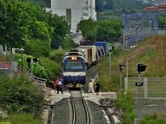1913+1916 (firedmanager) Tags: train tren 1900 bizkaia vía narrowgauge ferrocarril trena feve estrecha mercancías sunsundegui ferrocarrilesdevíaestrecha