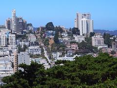 San Francisco (FRAUSCHNERT) Tags: sanfrancisco telegraphhill architektur wolkenkratzer skyline ausblick pflanzen kalifornien sommer hitzewelle roadtrip rundreise mietwagen unterwegs highlights usa amerika westkste hitze heis urlaub frauschoenert reise highwaynr1