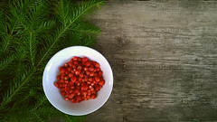 WP_20160623_16_39_28_Progd (julia.samoilenko) Tags: strawberry berry fur tree naturemorte stilllife colourful colours colorful colors red wood green summer forest bowl tasty delicious