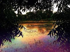 Twilight above the Milldam (johnnyp_80435) Tags: iridescence sundown dusk milldam texas georgetown berrysprings