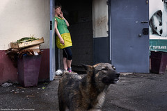Break    (constantiner) Tags: street city summer people urban woman dog animals 35mm daylight asia day pentax russia outdoor candid streetphotography sigma siberia urbanexploration streetphoto daytime smoker urbanism russians  tomsk    russianfederation   whitewoman peoplephotography     europeanwoman  tomskayaoblast  summer2016   sigmaart pentaxk3 sigmaart35mm
