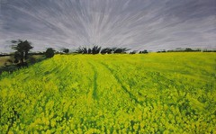 Oilseed Rape Field in Ballycotton (niall mccarthy) Tags: ireland irish art yellow rural painting neon acrylic rape agriculture acrylics rapeseed oilseed