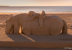 SSS_0217 (Sam 8899) Tags: sand sculpture beach sunrise morning light sky sea color