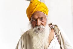 Anziano sikh al tempio di Delhi - An elderly sikh in the Delhi temple (robmanf55) Tags: india verde delhi whit indians sikh yello sikhism turbante gurudwarabanglasahib