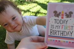 Birthday Boy (KatyKatkins) Tags: firstbirthday milestone babyboy gardenplay