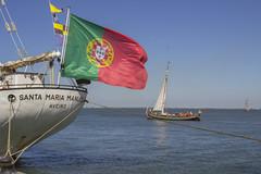 _MG_2181 (Arthur Pontes) Tags: tall ships barco boat navio race ocean old vintage lisbon lisboa summer sol sun maxico poland polonia cais atracar atracado porto seaport portugal flag venezuela south america europe ue mastro casco vela corda