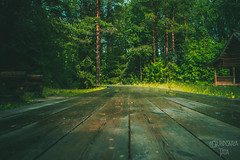 _MG_8827-59 (the_insk) Tags: village outdorse nature architecture green summer russia road