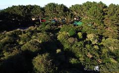 Groix Parc  Bout 15 (DD 29) Tags: bretagne morbihan le groix parcbout filet arbres jeux cerfvolantphotoarienne ricoh triton