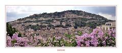 I colori della Sicilia - 25 (Jambo Jambo) Tags: modica ragusa sicilia sicily italia italy panorama landscape cityscape unesco patrimoniodellunesco jambojambo sonydscrx100