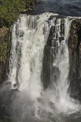 28072016-_GOC0489 (Gustavo Occelli) Tags: agua brasil cascadas cataratas fozdoiguaz landscape maravilla maravilladelmundo naturaleza paisaje rompiente