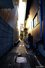 (atacamaki) Tags: xt1 23mm f14 xf fujifilm jpeg atacamaki  japan     life sunset