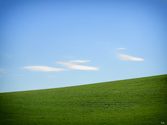 green line (Peter Schler) Tags: nature natur flickr peterpe1 sauerland germany europe green grn line linie