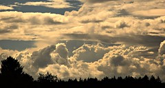 Sommer 2016 (kadege59) Tags: sky dramaticsky suhl summer sdthringen thuringia thringen thringerwald germany deutschland d3300 wow nature weather explore20160821 explore