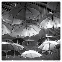 263/366 black white day (tideloon) Tags: entwicklung 2016 september 3662016 366the2016edition 366dayproject square blackandwhite blackwhiteday 23mm fujinonxf23mmf14r fujifilm fujifilmxt1 umbrella decoration