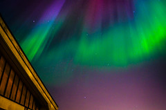 Above (Lisa Widerberg) Tags: blue trees sky sun green home colors silhouette night dark stars lights evening weird town colorful colours sweden stockholm magic alien north magenta late unusual colourful scandinavia magical starry astrology northernlights auroraborealis astrophoto norrsken starrynightsky