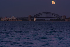 20150306-063153-_DSC5450.jpg (Foster's Lightroom) Tags: moon water sydney bridges australia newsouthwales sydneyharbour theatres sydneyoperahouse sydneyharbourbridge harbours vaucluse