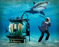 L'exploration sous-marine (Philmon Shivar) Tags: mer eau requin sousmarin scaphandre