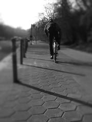 St.Pauli - Helgolnder Allee (chicitoloco) Tags: hamburg walkabout asphalt landungsbrcken stpauli bitumen reeperbahn allee richtung helgolnder chicitoloco