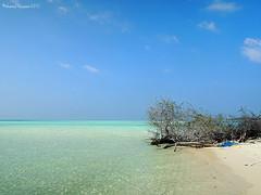 Beach (hassaan 2015) Tags: maldives dhivehi raajje dhonveli