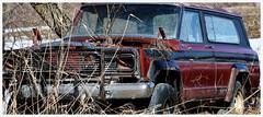 """Bon pour la casse / Goog For Breaks """"Explored"""" (francepar95) Tags: plants abandoned car landscape voiture québec paysage plantes abandonné végétation yamaska jeepwagoneer"""