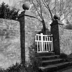 Garden Gate (magaroonie) Tags: wall gate musselburgh week40 stepsandstairs 7daysofshooting inveresklodgegarden blackandwhitewednesday