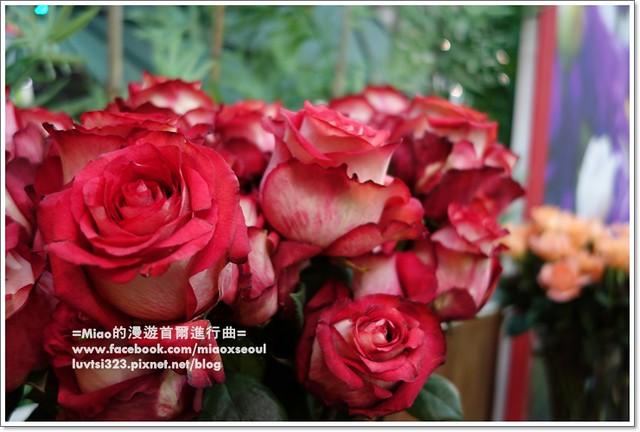 고양국제꽃박람회028