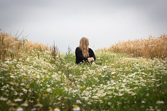 Imperfection (_anke_) Tags: flowers nature field digital 50mm freedom hill longhair meadow overcast rye identity faceless noface wilderness conceptual hillside imperfection 2016 primelens chamomilla