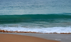 07-070505 Spanien 3 162-001 (hemingwayfoto) Tags: andalusien atlantik brandung conildelafrontera europa meer morgens radtour reise sand spanien strand wellen