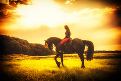 The girl and her horse (pyrolim) Tags: pferd reiterin frau abend friese landschaft