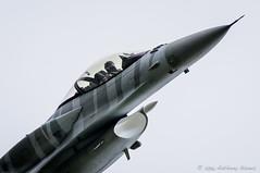 Polish display pilot at work, during a high speed turn (DrAnthony88) Tags: lockheedmartinf16c nikkor200400f4gvrii nikond810 polishairforce raffairford tigerdemoteam aircraft airplane modernmilitary